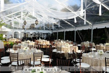 Tent Decor & Affairs In the Air - Tent Decor